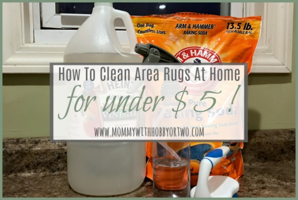 How To Deep Clean Your Area Rugs At Home For Under $5
